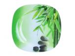 3716 Тарелка квадратная (25*25 см) (Зеленый бамбук)