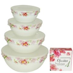 30054-001 Набор емкостей для хранения продуктов с крышкой 4шт (7', 6' , 5' , 4,2' ) 'Орхидея'