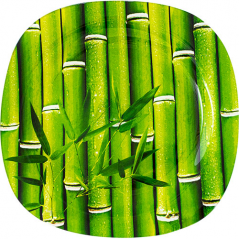 3716-3 Тарелка квадр 10' - 25см (Свежий бамбук)
