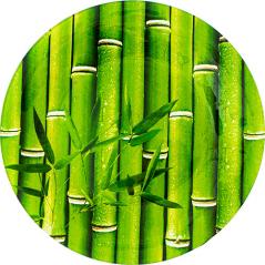 309-3 Тарелка круг 10' - 25см (Свежий бамбук)
